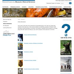 Online Adventures: North Carolina Museum of Natural Sciences