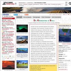 Du Krakatau à Bali (16-jours d'étude à la découverte des volcans de Java, Indonésie)