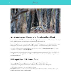 An Adventurous Weekend In Pench National Park