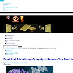 Email List Advertising Campaigns Success You Can't Miss