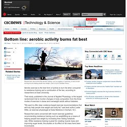 Bottom line: aerobic activity burns fat best - Technology & Science