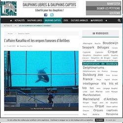 L'affaire Kasatka et les orques tueuses d'Antibes - Dauphinlibre.be