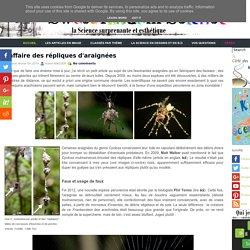 L'affaire des répliques d'araignées