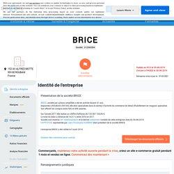 BRICE (ROUBAIX) Chiffre d'affaires, résultat, bilans sur SOCIETE.COM - 312560584