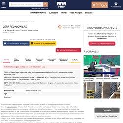 Société CERP REUNION SAS à ST DENIS (Chiffre d'affaires, bilans, résultat) avec Verif.com - Siren 491962445