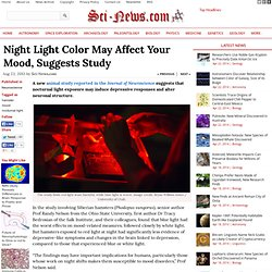 Night Light Color May Affect Your Mood, Suggests Study