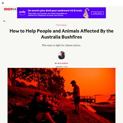 How to Help People and Animals Affected By the Australia Bushfires