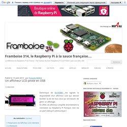 Un afficheur LCD piloté en USB - Framboise 314, le Raspberry Pi à la sauce française....