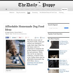 Affordable Homemade Dog Food Ideas