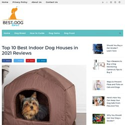 Best Affordable Indoor Dog Houses in 2021