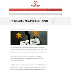 Proceeding As A Pro Se Litigant