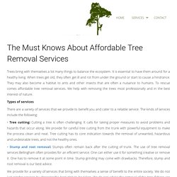The Must Knows About Affordable Tree Removal Services