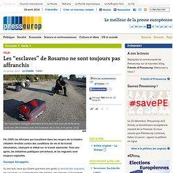 """Italie : Les """"esclaves"""" de Rosarno ne sont toujours pas affranchis"""