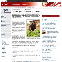 Lesotho gardens relieve food crisis