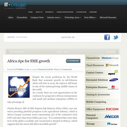 Africa ripe for SME growth