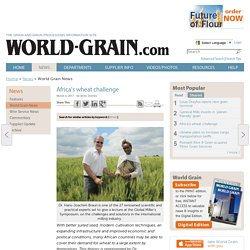 Africa's wheat challenge