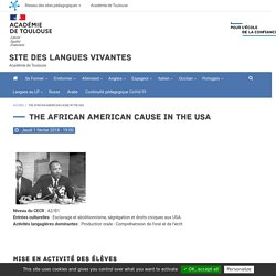 The African American cause in the USA