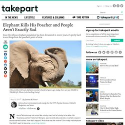 African Elephant Kills His Poacher and People Aren't Exactly Sad