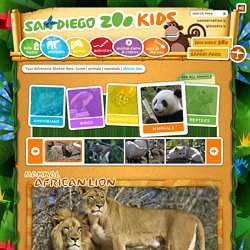 San Diego Zoo (Kids)