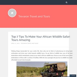 Top 7 Tips To Make Your African Wildlife Safari Tours Amazing – Trevaron Travel and Tours
