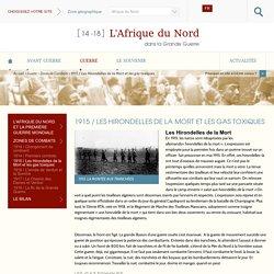 L'Afrique du Nord, Par la Communauté de Communes de Verdun et la Ville de Verdun