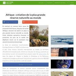 Afrique: création de la plus grande réserve naturelle au monde