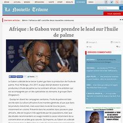 Afrique : le Gabon veut prendre le lead sur l'huile de palme