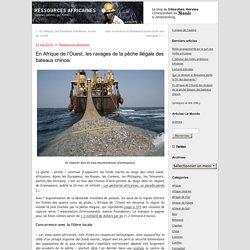 En Afrique de l'Ouest, les ravages de la pêche illégale des bateaux chinois