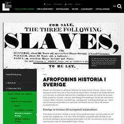 Afrofobins historia i Sverige