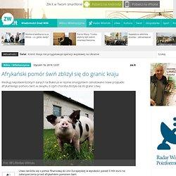 WILNO WILENSZCYZNA 16/01/14 Afrykański pomór świń zbliżył się do granic kraju