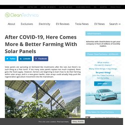 After COVID-19, Here Comes More And Better Farming With Solar Panels