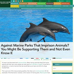 Against Marine Parks That Imprison Animals? You Might Be Supporting Them and Not Even Know It