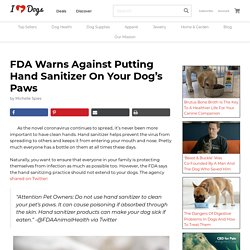 FDA Warns Against Putting Hand Sanitizer On Your Dog's Paws