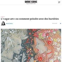 L'«agar art» ou comment peindre avec des bactéries