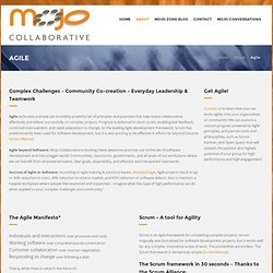 The Mojo Collaborative