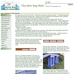 Agility Bits - The Mini Dogwalk