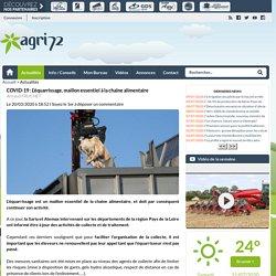 AGRI72 20/03/20 COVID-19 : L'équarrissage, maillon essentiel à la chaîne alimentaire
