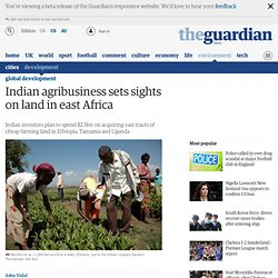 Indian agribusiness sets sights on land in east Africa