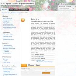 CDI - Lycée agricole Auguste Loutreuil - Estime de soi