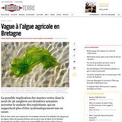 Vague à l'algue agricole en Bretagne