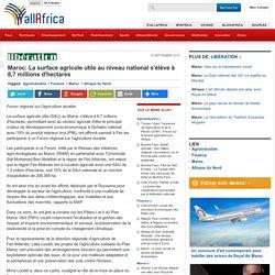 Maroc: La surface agricole utile au niveau national s'élève à 8,7 millions d'hectares - allAfrica.com
