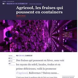 Agricool, les fraises qui poussent en containers - Oui ! Le magazine de la Ruche Qui Dit Oui !