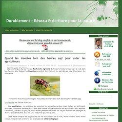 Quand les insectes font des heures sup' pour aider les agriculteurs - Durablement - Réseau & écriture pour la nature