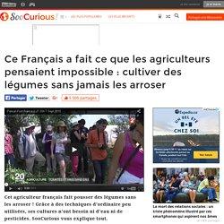 Ce Français a fait ce que les agriculteurs pensaient impossible : cultiver des légumes sans jamais les arroser
