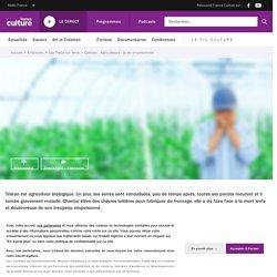 Agriculteurs : la vie empoisonnée
