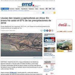 Lluvias dan respiro a agricultores en Arica: En enero ha caído el 67% de las precipitaciones de 2016