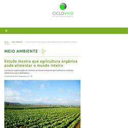 Estudo mostra que agricultura orgânica pode alimentar o mundo inteiro – CicloVivo