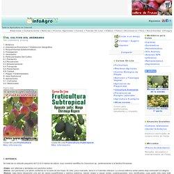 Agricultura. El cultivo del arándano.