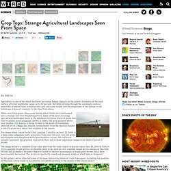 Crop Tops: Strange Agricultural Landscapes Seen From Space | Wired Science