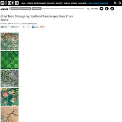 Crop Tops: Strange Agricultural Landscapes Seen From Space